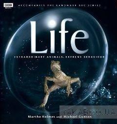 Life: Extraordinary Animals, Extreme Behaviour